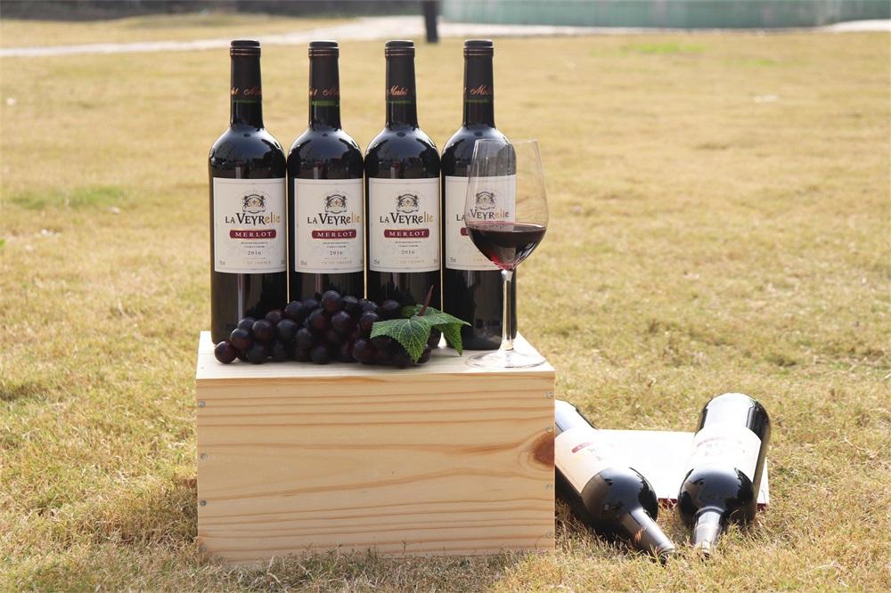 做葡萄酒加盟生意能不能赚钱