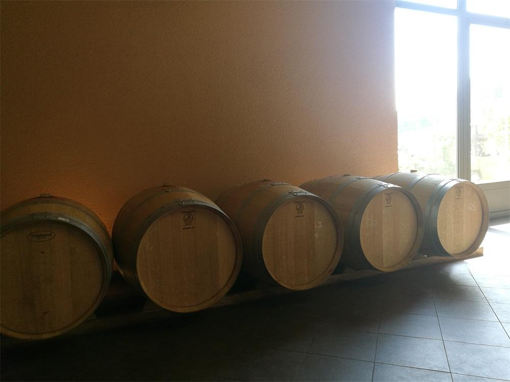 选择什么样的品牌开展法国红酒生意