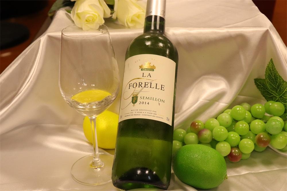 投资进口葡萄酒生意的发展好不好