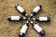 进口葡萄酒生意怎样起步好